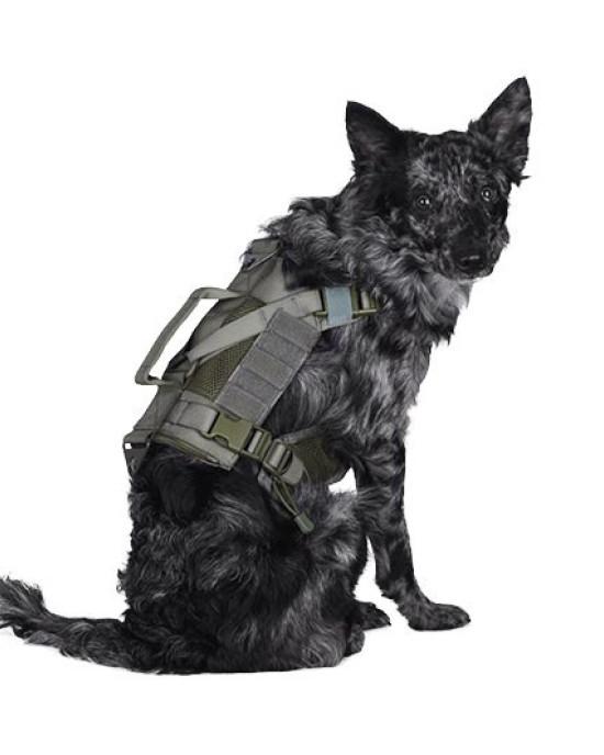 Primal Gear - Ham Tactic K9 - Unitati canine - Diverse Culori
